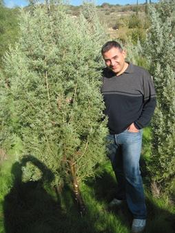 Bilal Kifah stands by his chosen Christmas tree. Photo: Yoav Devir