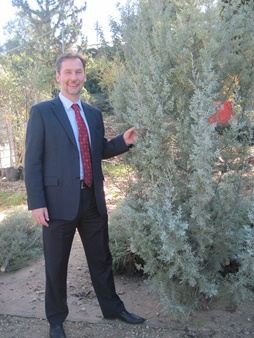 Vadim Pankov with chosen Christmas tree. Photo: Yoav Devir