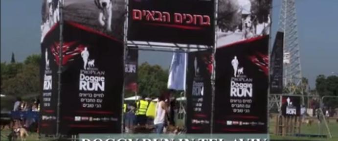 Doggie Run Tel Aviv