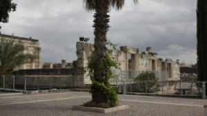 The glories of Capernaum (photo credit: Shmuel Bar-Am)