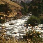 Jordan River in Northern Israel