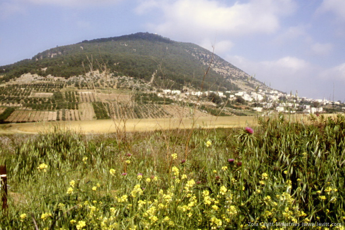 Mt Tabor Trump Closing Palestinian Mission Pro