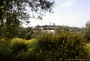 Mount Zion